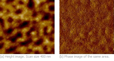 Fig. 1.Height and phase images of block copolymer (polystyrene-block-polymethylmethacrylate) film obtained in the Tapping Mode. Images courtesy of S. Magomov.