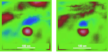 Fig. 1. Topography (left) and magnetic (right) images of a Co mono domain particle obtained in lift mode using cantilever from the NSC36 series with Co-Cr coating. Scan size 300 x 300 nm. Image courtesy of Prof. V. Shevyakov, MIET.