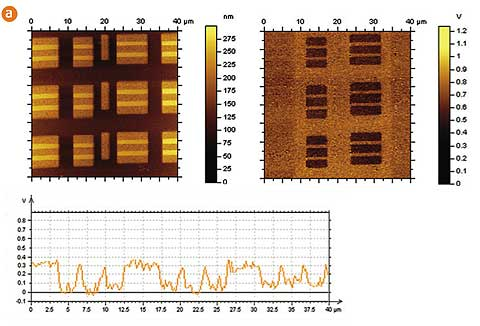 Fig. 2a. Topography (left) and surface potential (right) images of a Static Random Access Memory(SRAM) structure obtained by single-path Kelvin Force Microscopy. A regular NSC14/Ti-Pt probe with a tip radius of ~25 nm was used.